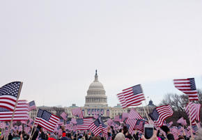 American Flags surrounding the capitol building
