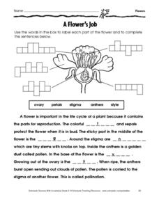 A Flower's Job Worksheet