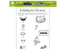 A Holiday for the Senses Worksheet