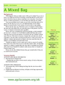 A Mixed Bag Lesson Plan