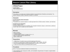 A Model Project Lesson Plan