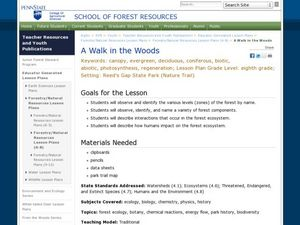A Walk in the Woods Lesson Plan