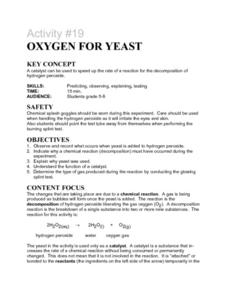 Activity #19 Oxygen For Yeast Lesson Plan