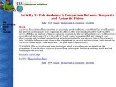 Activity 3 - Fish Anatomy: A Comparison Between Temperate and Antarctic Fishes Lesson Plan