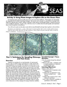 Activity 3: Using Photo Images to Explore Life on the Ocean Floor Lesson Plan