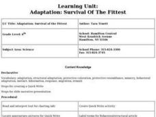 Adaptation: Survival Of The Fittest Lesson Plan