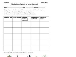 Adaptations of plants for seed dispersal Worksheet