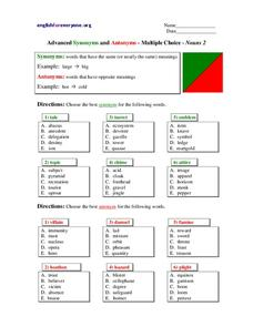 Advanced Synonyms and Antonyms - Multiple Choice - Nouns 2 Worksheet