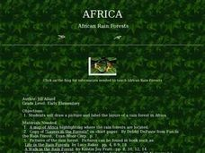 African Rain Forests Lesson Plan