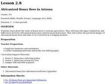 Africanized Honey Bees in Arizona Lesson Plan