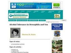 Alcohol Tolerance in Drosophila and You Lesson Plan