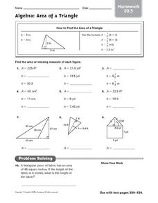 Algebra: Area of a Triangle Worksheet
