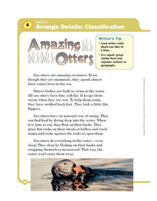 Amazing Otters Worksheet