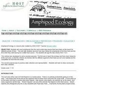 Amphipod Ecology Lesson Plan