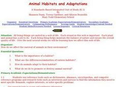 Animal Habitats and Adaptations Lesson Plan