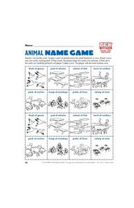 Animal Name Game Lesson Plan