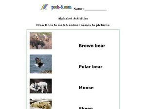 Animal Picture Match Worksheet
