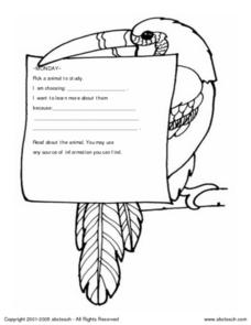 Animal Research Form Worksheet