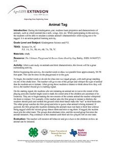 Animal Tag Lesson Plan