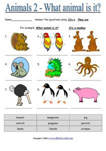 Animals 2 - What Animal is It Worksheet
