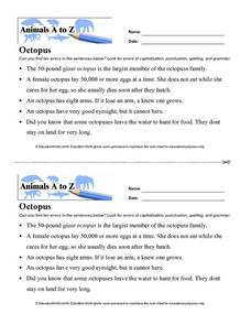Animals A to Z: Octopus Worksheet