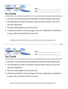 Animals A to Z: Sea Turtle Worksheet