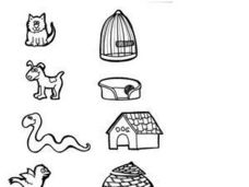 Animals and Their Houses Worksheet