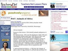 Animals of Africa Lesson Plan