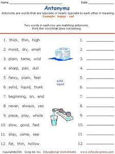 Antonyms or Not Antonyms? Worksheet