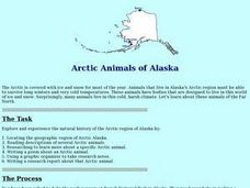 Arctic Animals of Alaska Lesson Plan