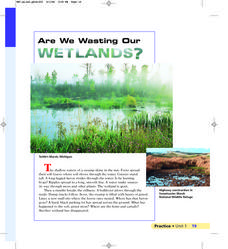 Are We Wasting Our Wetlands? Lesson Plan