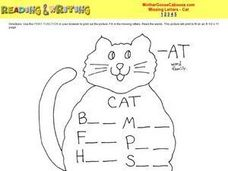 -at Word Family Worksheet