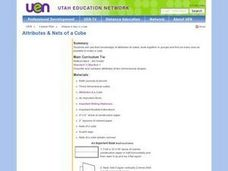 Attributes & Nets of a Cube Lesson Plan