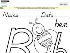B is for  Bee:  Upper and Lower Case Letter B Worksheet