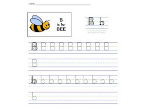 B Is For Bee Worksheet