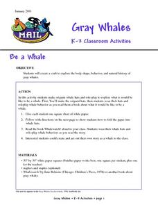 Be a Whale Lesson Plan