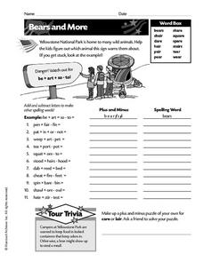 Bears and More Worksheet