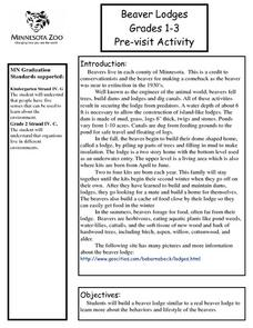 Beaver Lodges Lesson Plan