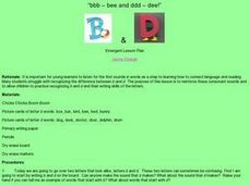 Bee and Dee Lesson Plan