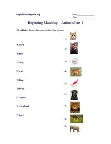 Beginning Matching - Animals Part 1 Worksheet