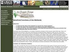 Beneficial Functions of the Wetlands Lesson Plan