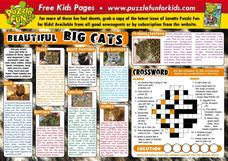 Big Beautiful Cats Lesson Plan