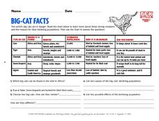 Big-Cat Facts Lesson Plan