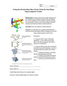 Biology: Protein Study Lesson Plan