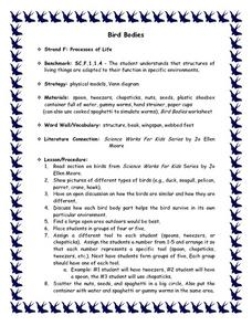 Bird Bodies Lesson Plan
