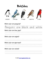 Bird Colors Worksheet