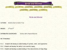 Birds and Worms Lesson Plan
