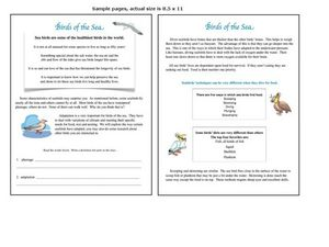 Birds of the Sea: Penguins Worksheet