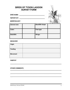 Birds of Tyson Lagoon Survey Form Worksheet