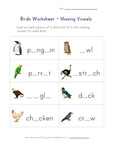 Birds Worksheet - Missing Vowels Worksheet